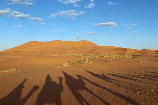 Photo de Circuit Maroc Pas Cher
