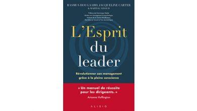 Photo of L'esprit du leader, de Rasmus Hougaard, Martiel Jacqueline Carter et Martial Vidaud