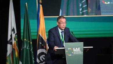 Photo de Fouzi Lekjaa siègera au comité exécutif de la FIFA, Patrice Motsepe élu président de la CAF